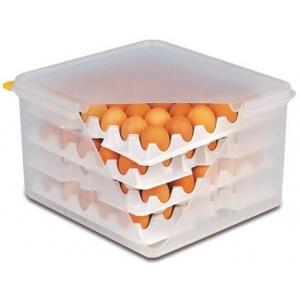 Контейнер для хранения яиц 35,4*32,5 см. h= 20 см. 8 лотков с крышкой полиэтилен APS