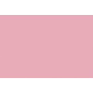 Салфетка 43*43 см. светлая брусника гладь
